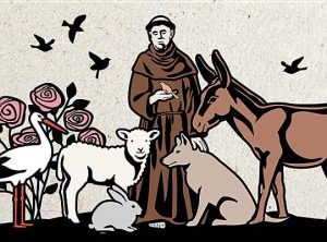 St. Francis Greeting Cards [With Envelope]
