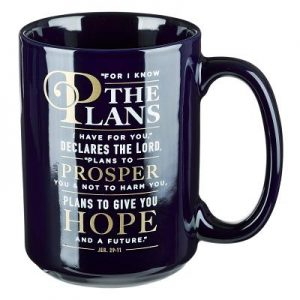 Mug for I Know the Plans