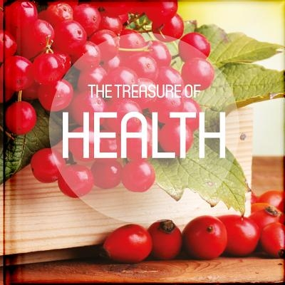 The Treasure of Health: Take a Pause from Your Busy Life to Read and Be Encouraged by the Anecdotes, Reflections, Poems, Scriptures, and Quota